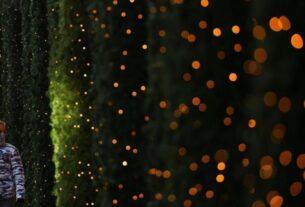 Δήμος Πειραιά: Χριστουγεννιάτικες δράσεις από τον Οργανισμό Πολιτισμού Αθλητισμού και Νεολαίας