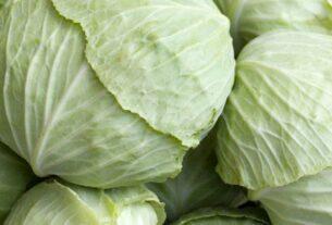 Λάχανο: Το χειμωνιάτικό λαχανικό που δρα ως φυσική πολυβιταμίνη!