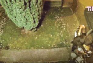 Viral Βίντεο; Οι απίστευτες γκάφες που συμβαίνουν στις κλοπές!