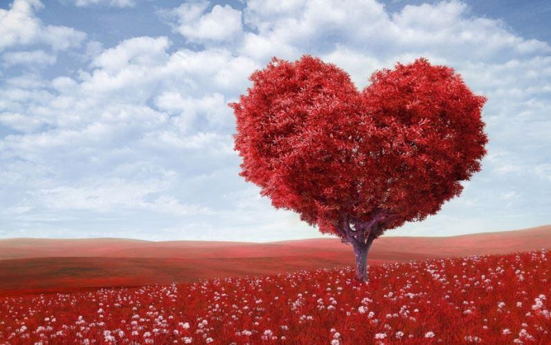 Γιορτή Αγίου Βαλεντίνου 14/2: Δέκα απίστευτα στοιχεία που δεν γνωρίζετε για τη «γιορτή των ερωτευμένων»