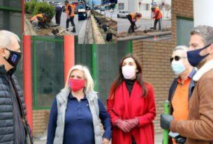 Δήμος Πειραιά: Φυτεύσεις στη νησίδα της λεωφόρου Θηβών στον Πειραιά-video