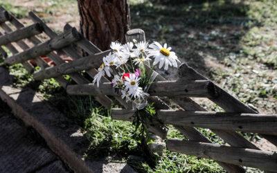 """Δολοφονία Γιώργου Καραϊβάζ: """"Είδα τους δράστες να του ρίχνουν τη χαριστική βολή"""""""