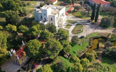 Άλσος Συγγρού: Βόλτα σε ένα πανέμορφο μέρος της Αττικής-video