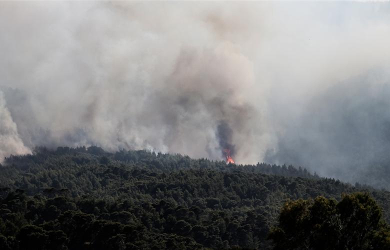Σύστημα έγκαιρου εντοπισμού πυρκαγιάς έφτιαξαν φοιτητές από τη Θεσσαλονίκη – Τι κάνει όταν βρει εστία