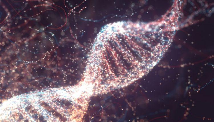 apokalypsi-apo-archaio-dna-erevnites-anakalypsan-genetikes-omoiotites-metaxy-ton-simerinon-ellinon-me-osous-zousan-to-2-000-p-ch