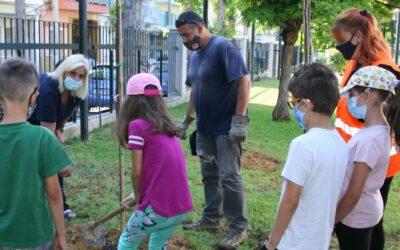 Παγκόσμια Ημέρα Περιβάλλοντος: Φυτεύσεις από μαθητές Δημοτικών Σχολείων του Πειραιά