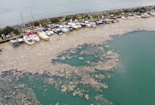 Η θαλάσσια βλέννα του Μαρμαρά απειλεί την Λήμνο και το Αιγαίο! Τι είναι