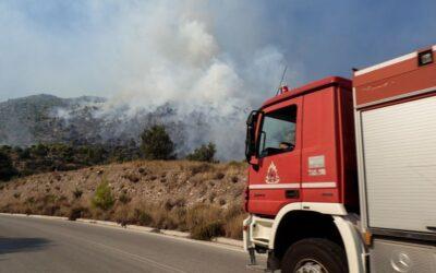 Σαλαμίνα: Φωτιά κοντά στη Λεωφόρο Ιπποκράτους