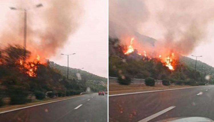 Κερατσίνι: Φωτιά στο Σχιστό (φωτό)