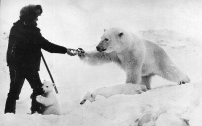 Viral Φωτογραφία: Ρώσος ταΐζει πολική αρκούδα την ώρα που το μικρό της τον αγκαλιάζει